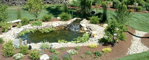 Pond with waterfall on green landscape