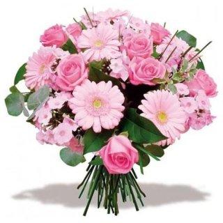 incantesimo-rosa-fiori-rosa