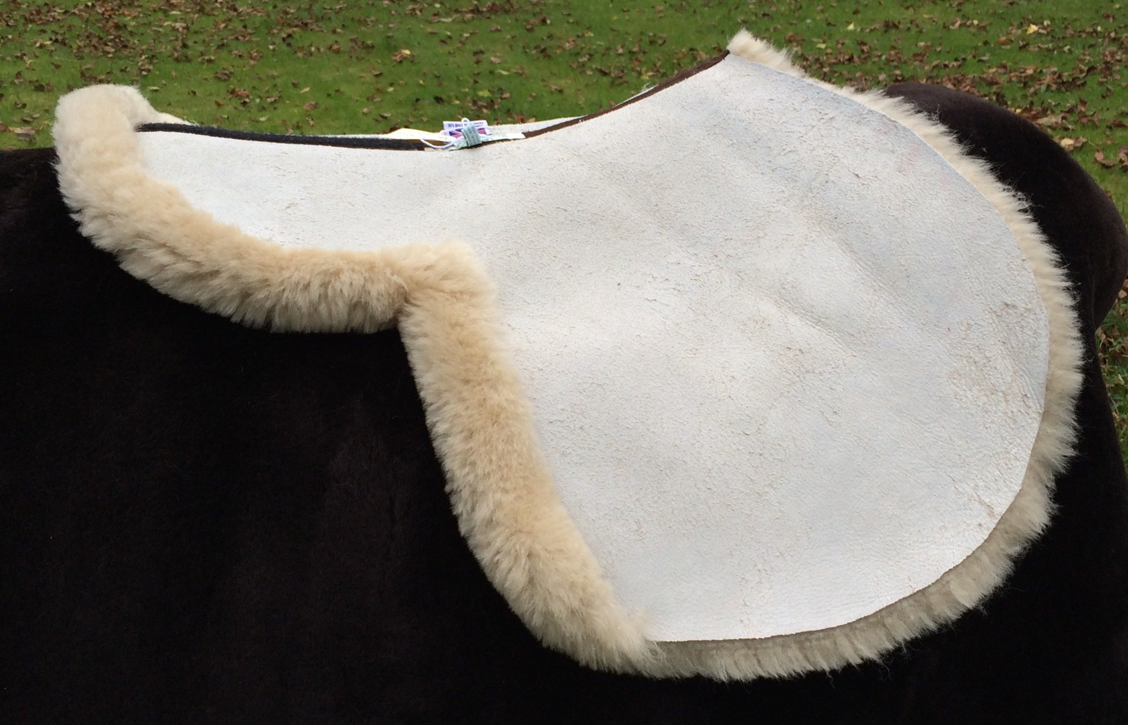 Forward Cut Jumping/CrossCountry Sheepskin Numnah Made in Cream, Ivory, Dark Brown, Black . (do not use black on a grey horse)