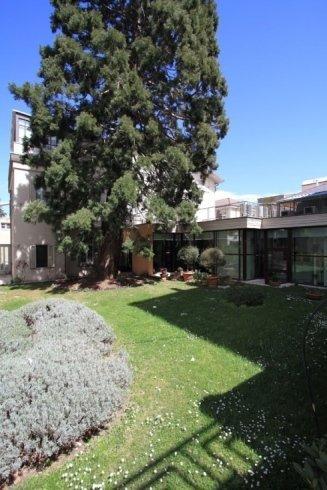 giardino esterno centro radiologico potito