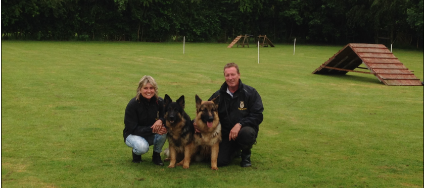 two trainers with two dogs