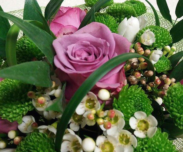una composizione di piantine grasse e fiori bianchi e una rosa viola al centro
