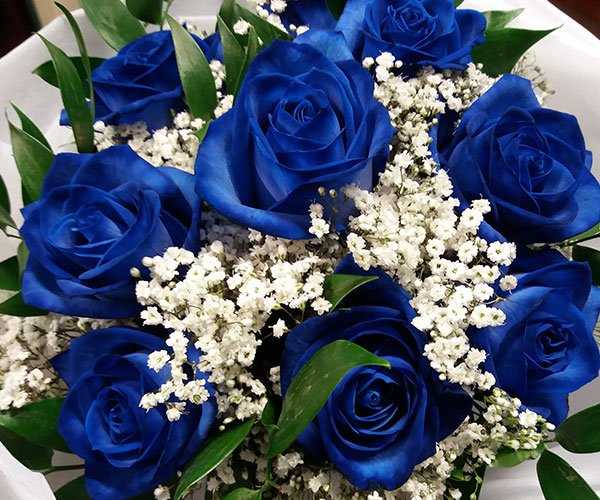 un bouquet di rose blu e fiorellini bianchi