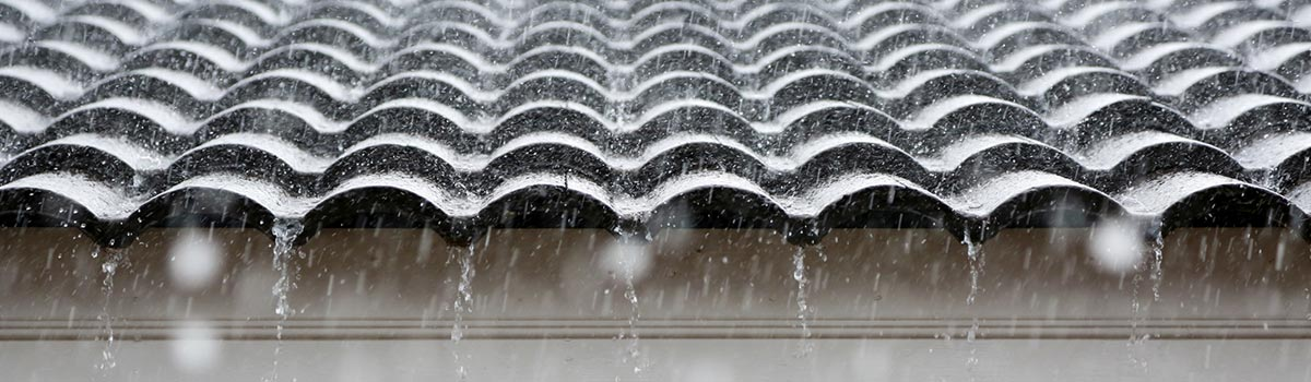 newcastle waterproofing professionals roof and rain water