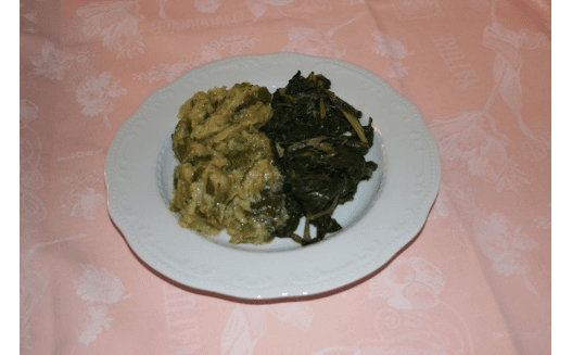 bis verdura cotta
