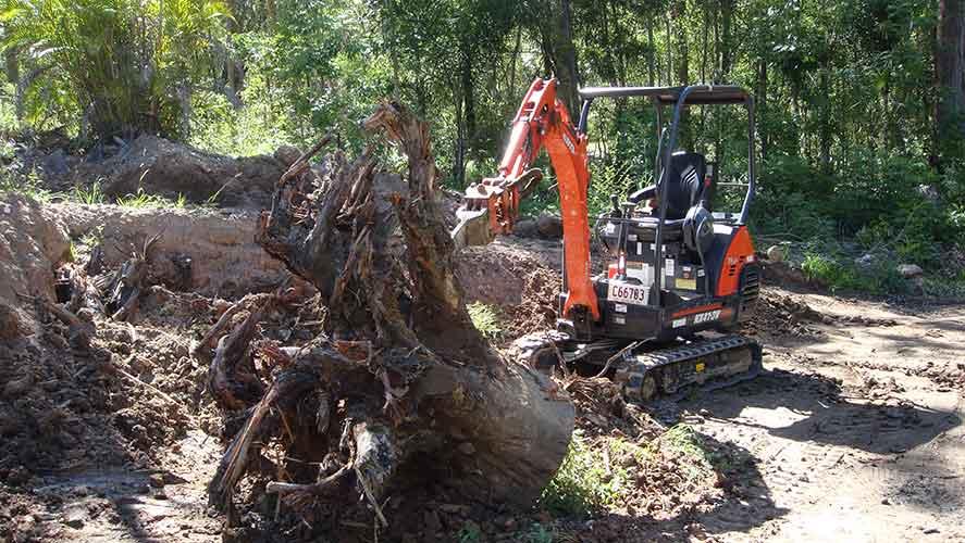 orange excavator with stump