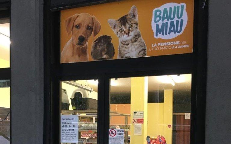negozio animali calolziocorte
