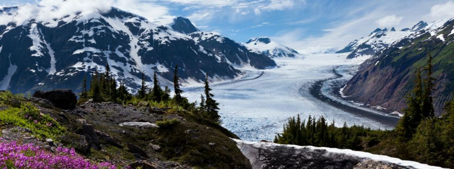 Medical care physician in Chugiak, AK