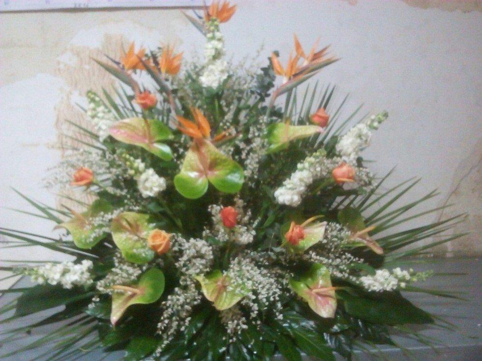 fiori arancioni foglie verdi