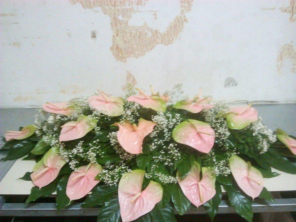 fiori bianchi rosa