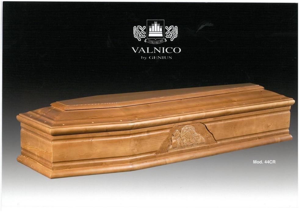 bara valnico genus