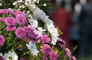 fiori bari
