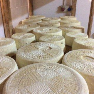 produzione formaggi