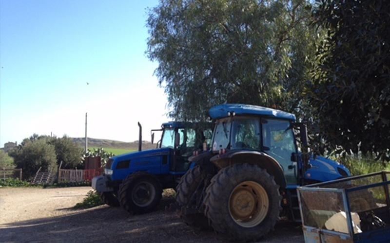azienda agricola casearia provincia di catania