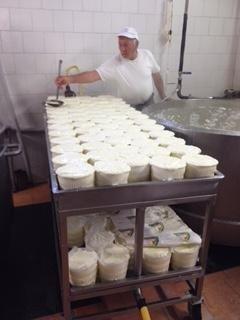 lavorazione dei formaggi