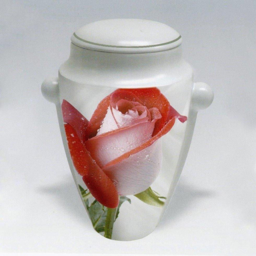 Urna cineraria con rosa