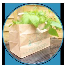 Garden Centre Supplies
