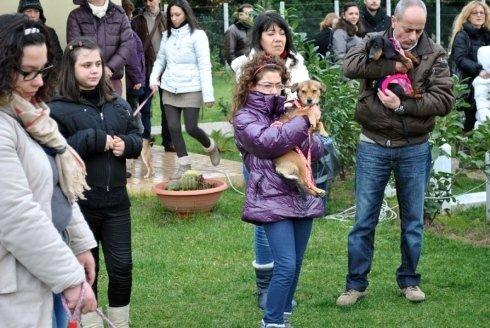 cerimonie funebri per animali