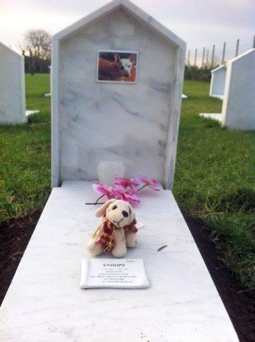 tomba Snoopy