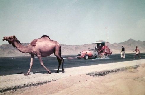 strade asfaltate in Egitto