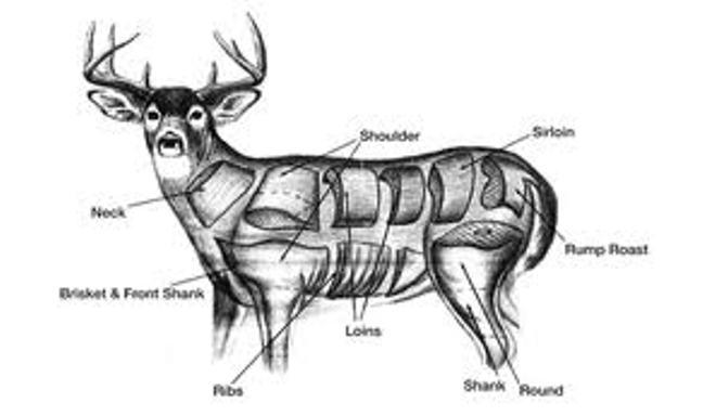 beef bought be a butcher meats' shop in Springville, AZ