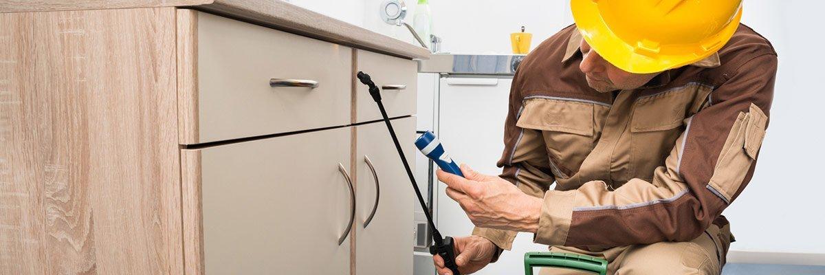 dr maks pest control worker spraying