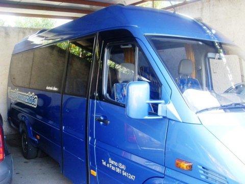 minivan per disabili