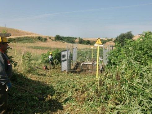 taglio erba grandi aree verdi