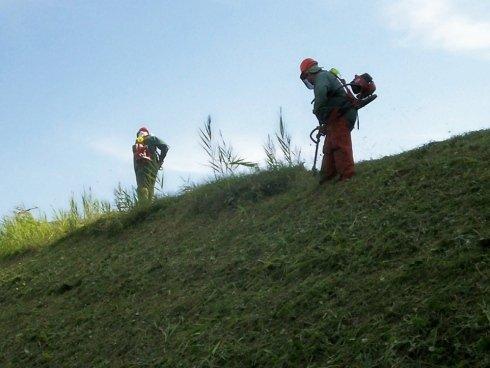 pulizia grande aree verdi