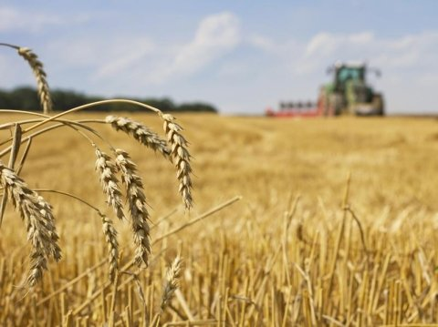 impianti stoccaggio cereali garlasco