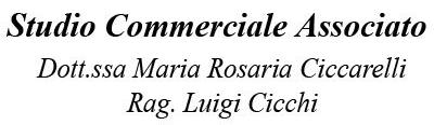 STUDIO COMMERCIALE CICCARELLI E CICCHI - LOGO
