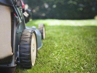 scheduled garden maintenance