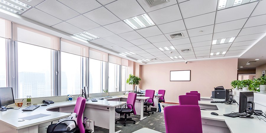 Open plan office with white desks and fuchsia pink chairs, with white suspended ceiling