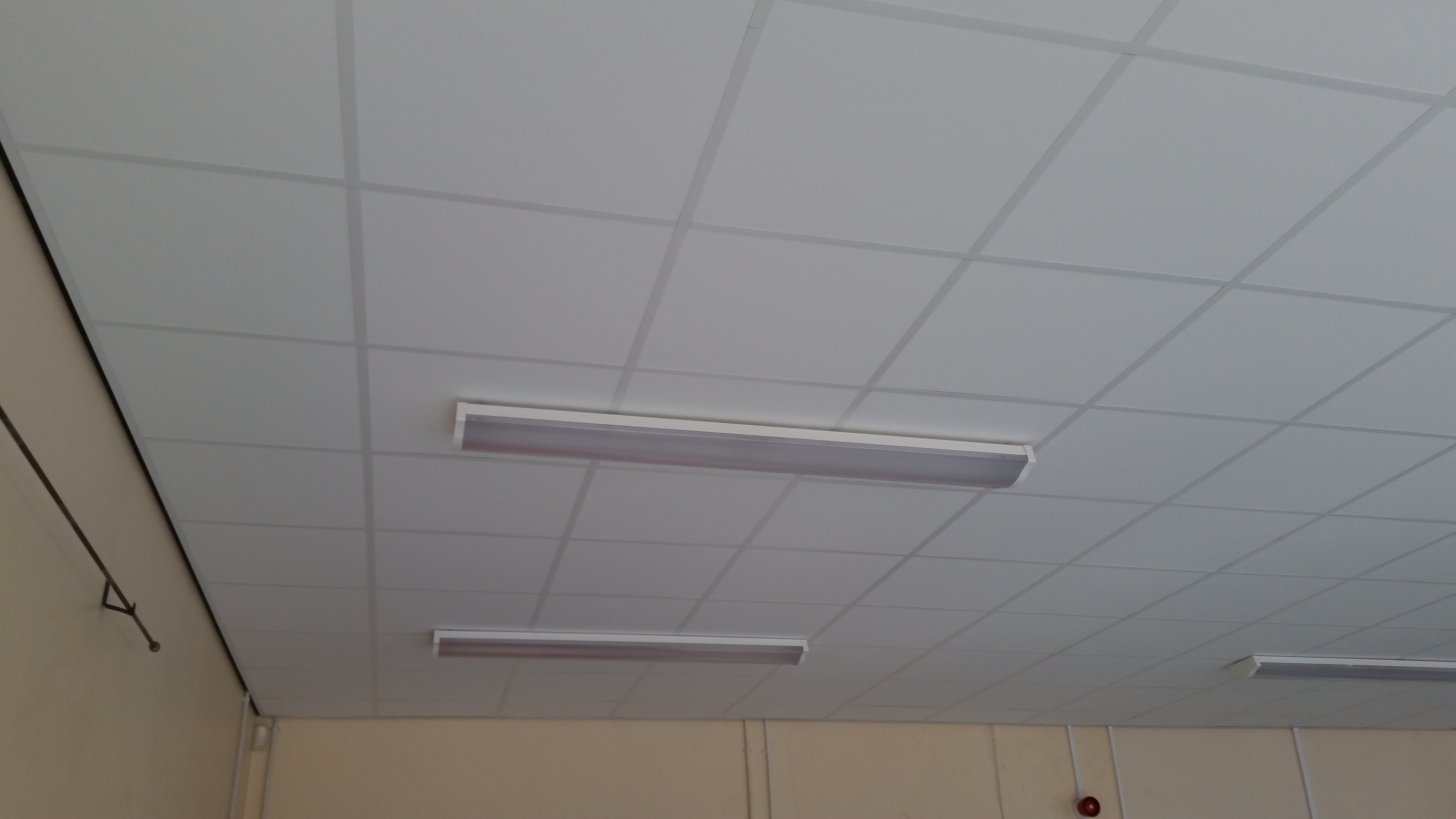 White ceiling with strip lights
