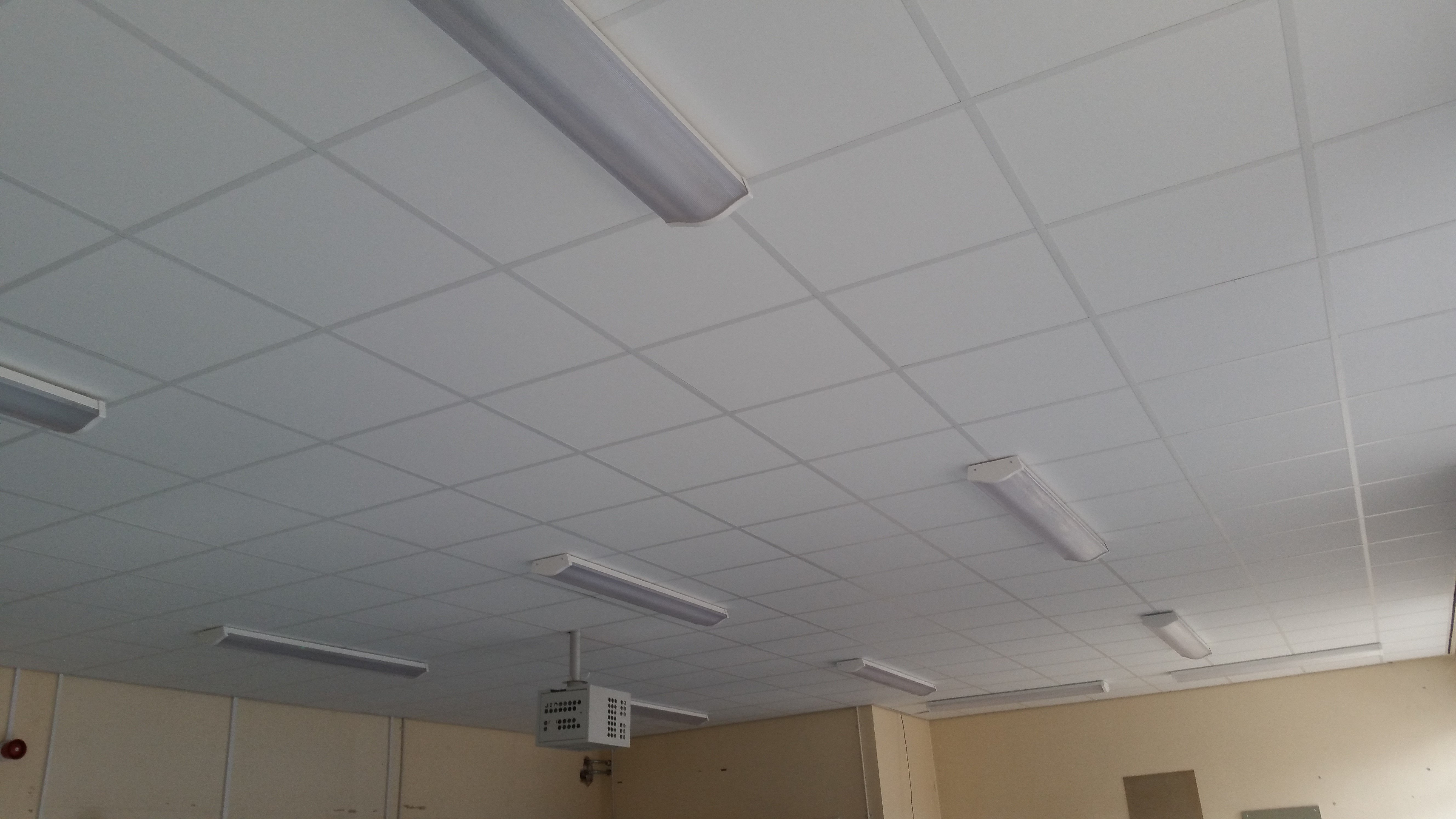 Strip lights in a suspended ceiling