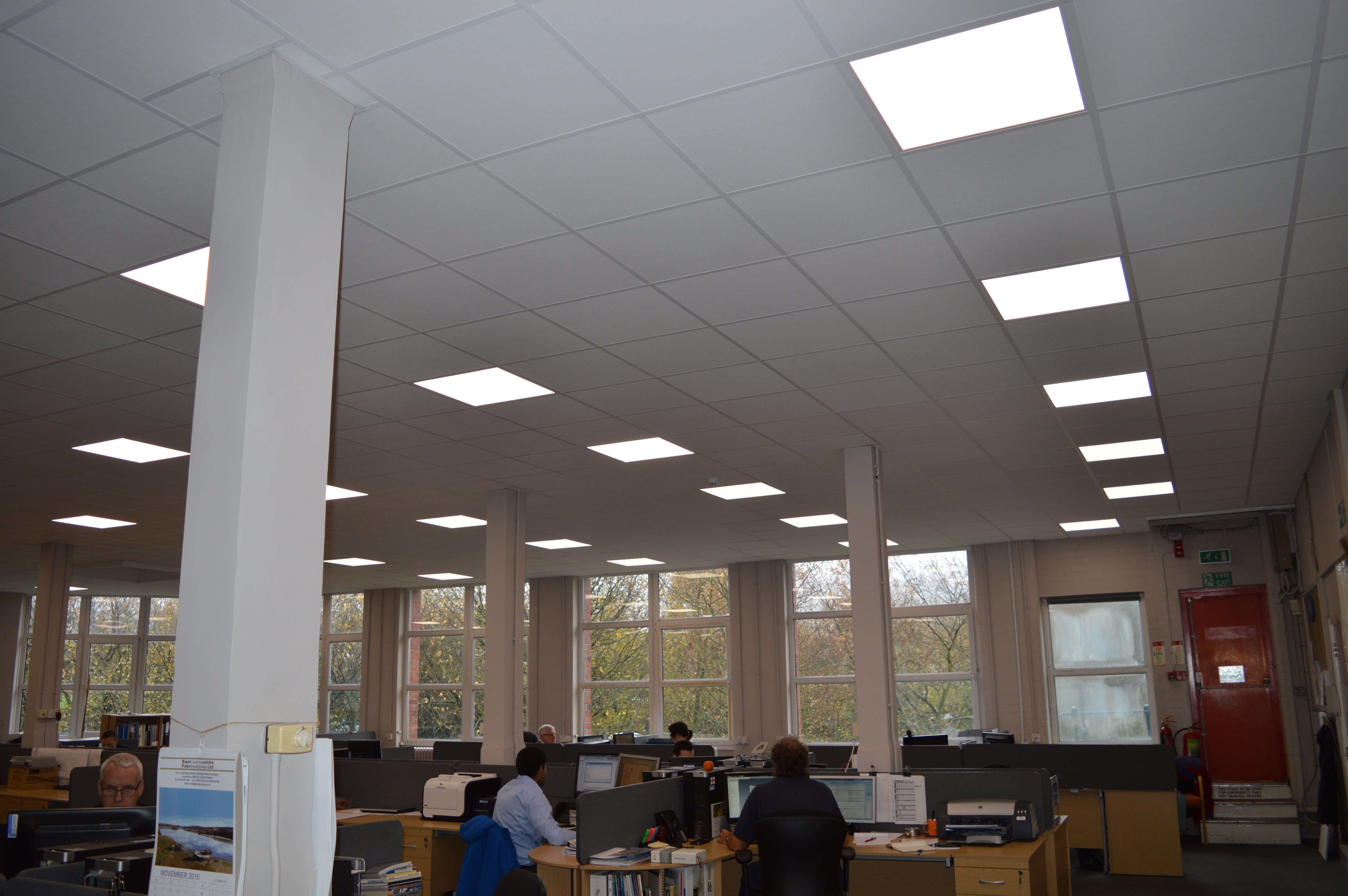 Employees at work in an office with a suspended ceiling