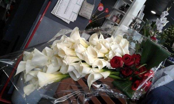 fiori recisi freschi