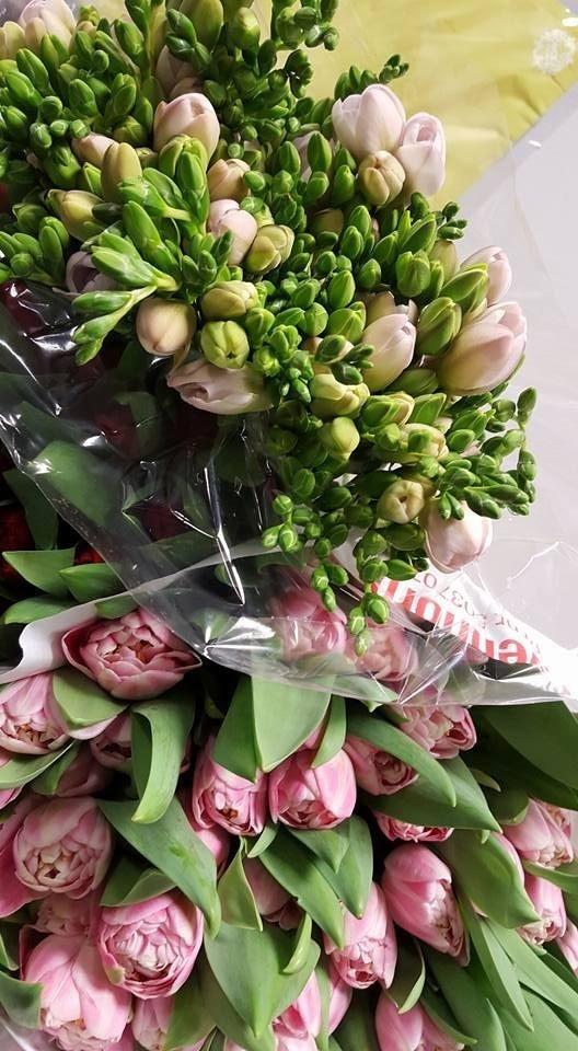 mazzi tulipani