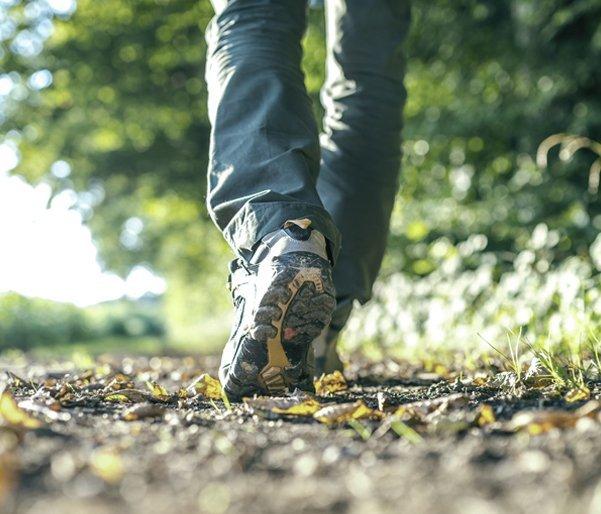 A man walking along a leafy path