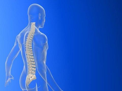 Miranda Dr. Francesco: specialista ortopedico
