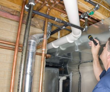 Our expert will keep your home pest free with our pest control in Cincinnati, OH