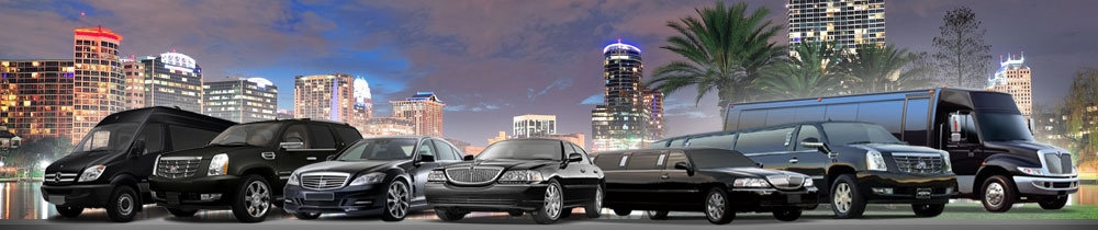 corporate b2b limo program photo