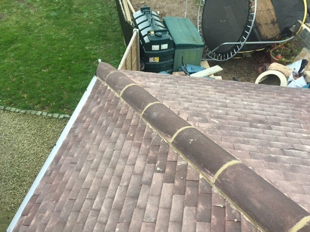 variety of roofs
