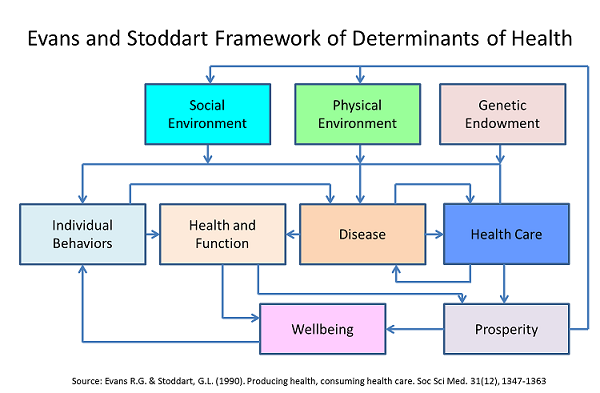 world health organisation social determinants of health pdf