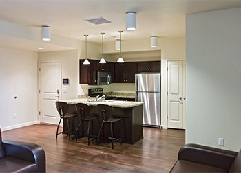 modern kitchen student rental