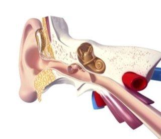 apparecchi sordità