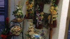 composizioni floreali, piante, piante grasse
