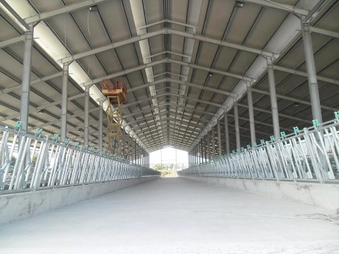costruzioni edili stalla