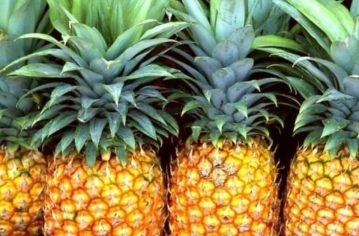 ananas fapanni