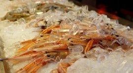secondi piatti giapponesi, contorni, sashimi di salmone